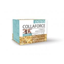COLLAFORCE OSTEO  20 saquetas