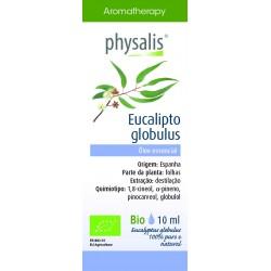 PHYSALIS Eucalipto globulus...